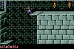 Prince of Persia Sega CD 29