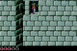 Prince of Persia Sega CD 35