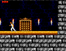 Prince of Persia SMS 22