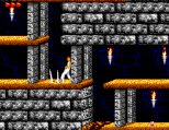 Prince of Persia SMS 24