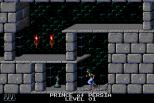 Prince of Persia Turbografx-16 12
