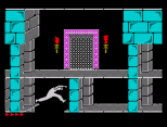 Prince of Persia ZX Spectrum 26