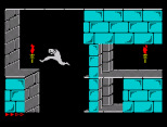 Prince of Persia ZX Spectrum 28