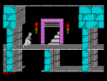 Prince of Persia ZX Spectrum 29