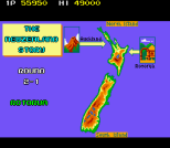 The New Zealand Story Arcade 058