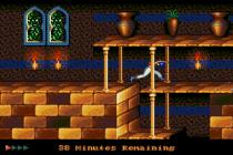 Prince of Persia Megadrive 64