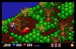 Voodoo Nightmare Atari ST 07