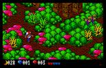 Voodoo Nightmare Atari ST 70