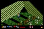 Voodoo Nightmare Atari ST 96
