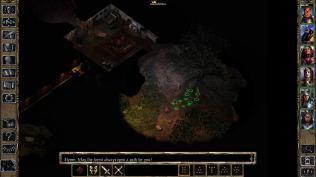 Baldur's Gate 2 Shadows of Amn PC 21