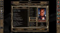Baldur's Gate 2 The Black Pits 2 PC 19