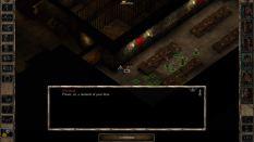 Baldur's Gate 2 The Black Pits 2 PC 40