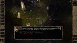 Baldur's Gate 2 Throne of Bhaal PC 04