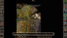 Baldur's Gate 2 Throne of Bhaal PC 52
