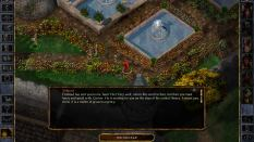 Baldur's Gate Enhanced Edition PC 20