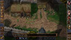Baldur's Gate Enhanced Edition PC 21