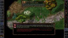 Baldur's Gate Enhanced Edition PC 28