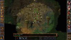 Baldur's Gate Enhanced Edition PC 29