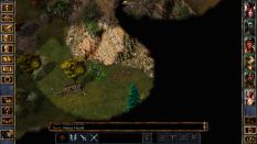Baldur's Gate Enhanced Edition PC 41