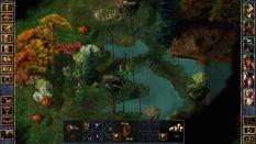 Baldur's Gate Enhanced Edition PC 49