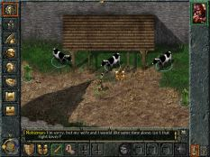Baldur's Gate PC 010