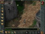 Baldur's Gate PC 019