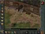 Baldur's Gate PC 024