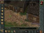 Baldur's Gate PC 025