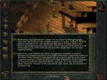 Baldur's Gate PC 029