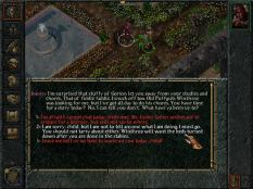 Baldur's Gate PC 033