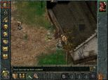 Baldur's Gate PC 038