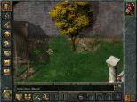 Baldur's Gate PC 041