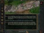 Baldur's Gate PC 048
