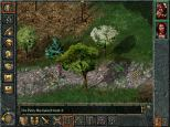 Baldur's Gate PC 049