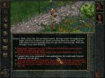 Baldur's Gate PC 050