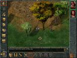 Baldur's Gate PC 051