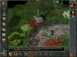 Baldur's Gate PC 052
