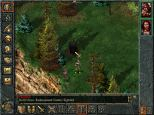 Baldur's Gate PC 058