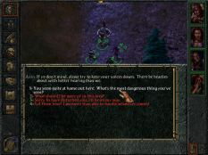 Baldur's Gate PC 077