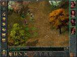 Baldur's Gate PC 083