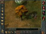 Baldur's Gate PC 084