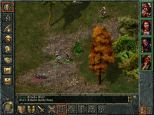 Baldur's Gate PC 092
