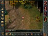 Baldur's Gate PC 095
