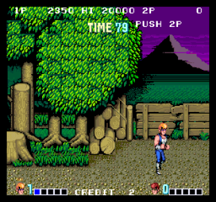 Double Dragon Arcade 45