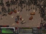 Fallout 2 PC 017