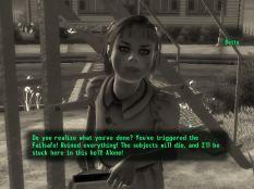 Fallout 3 PC 038