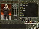 Icewind Dale 2 PC 102