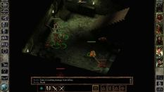Icewind Dale Enhanced PC 09