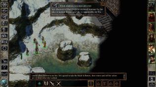 Icewind Dale Enhanced PC 16