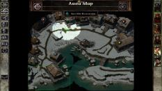 Icewind Dale Enhanced PC 17